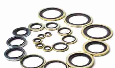 Dowty Seals/Bonded Washers