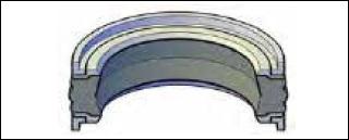 Piston Seals