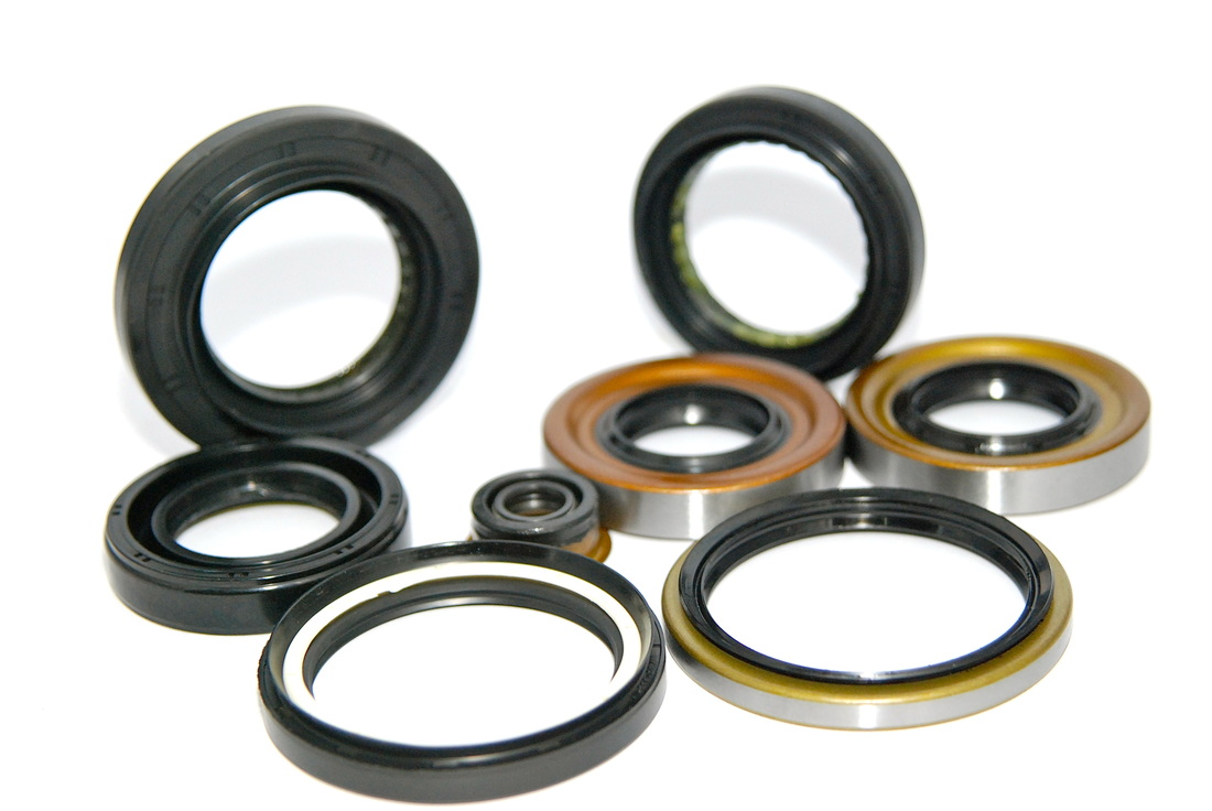 Rotary Shaft Seals / Oil Seals / Cassette Seals / Axial Seals